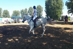 Majówka z koniem na poznańskim Spławiu