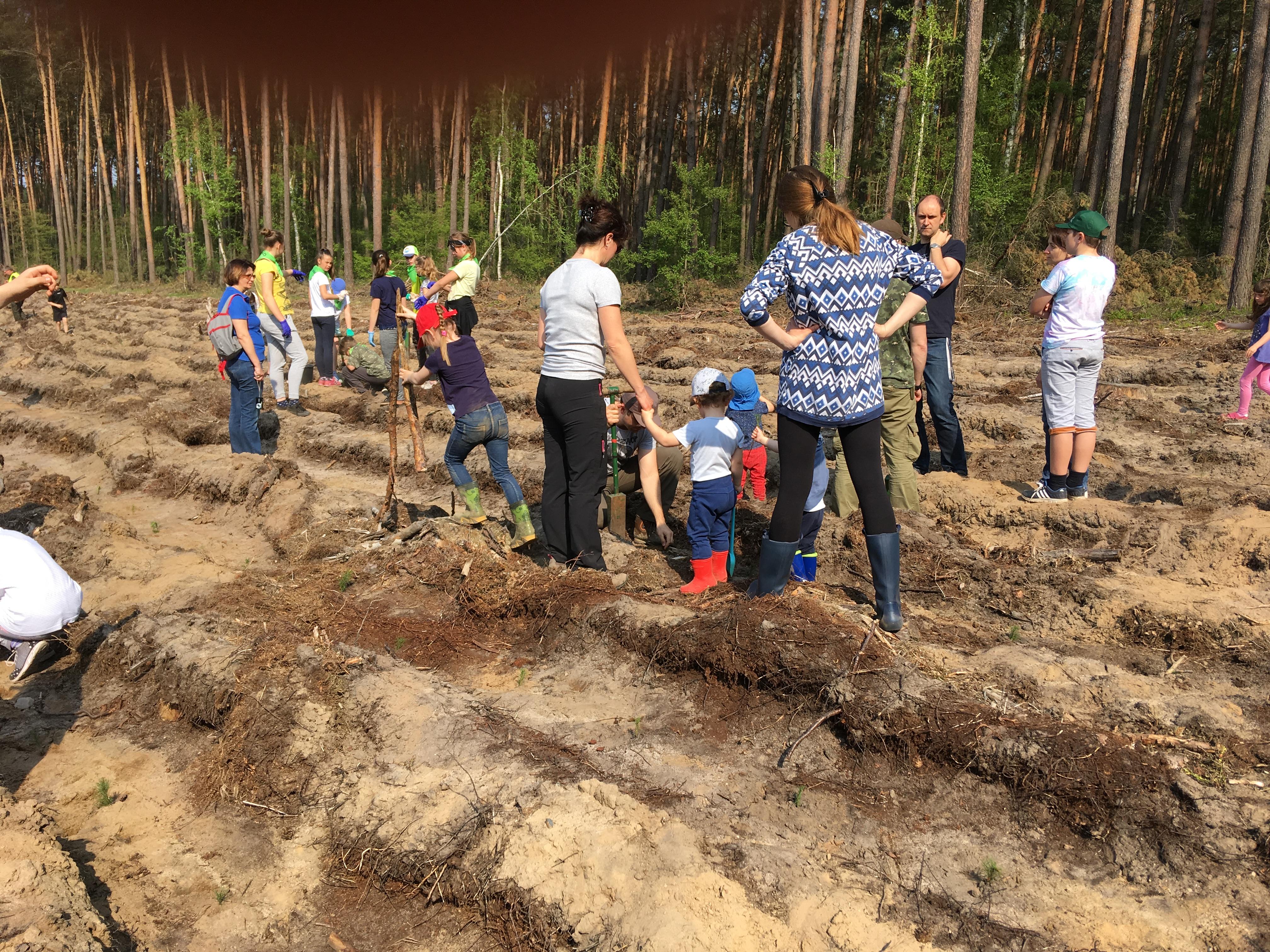 Mieszkańcy Leszna odpowiedzieli na apel leśników