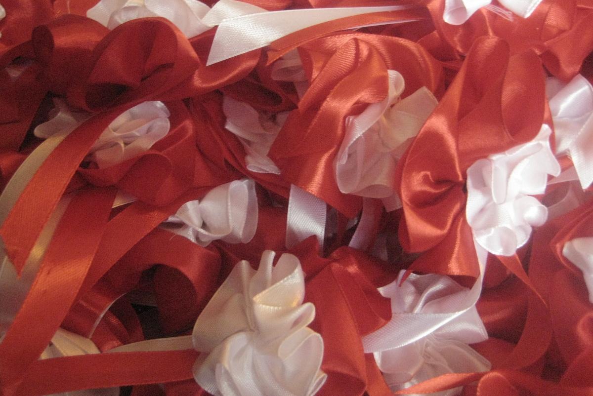 Pół tysiąca biało-czerwonych rozet