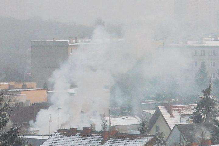 program kawka dym nad miastem zima - Urząd Miasta Poznania