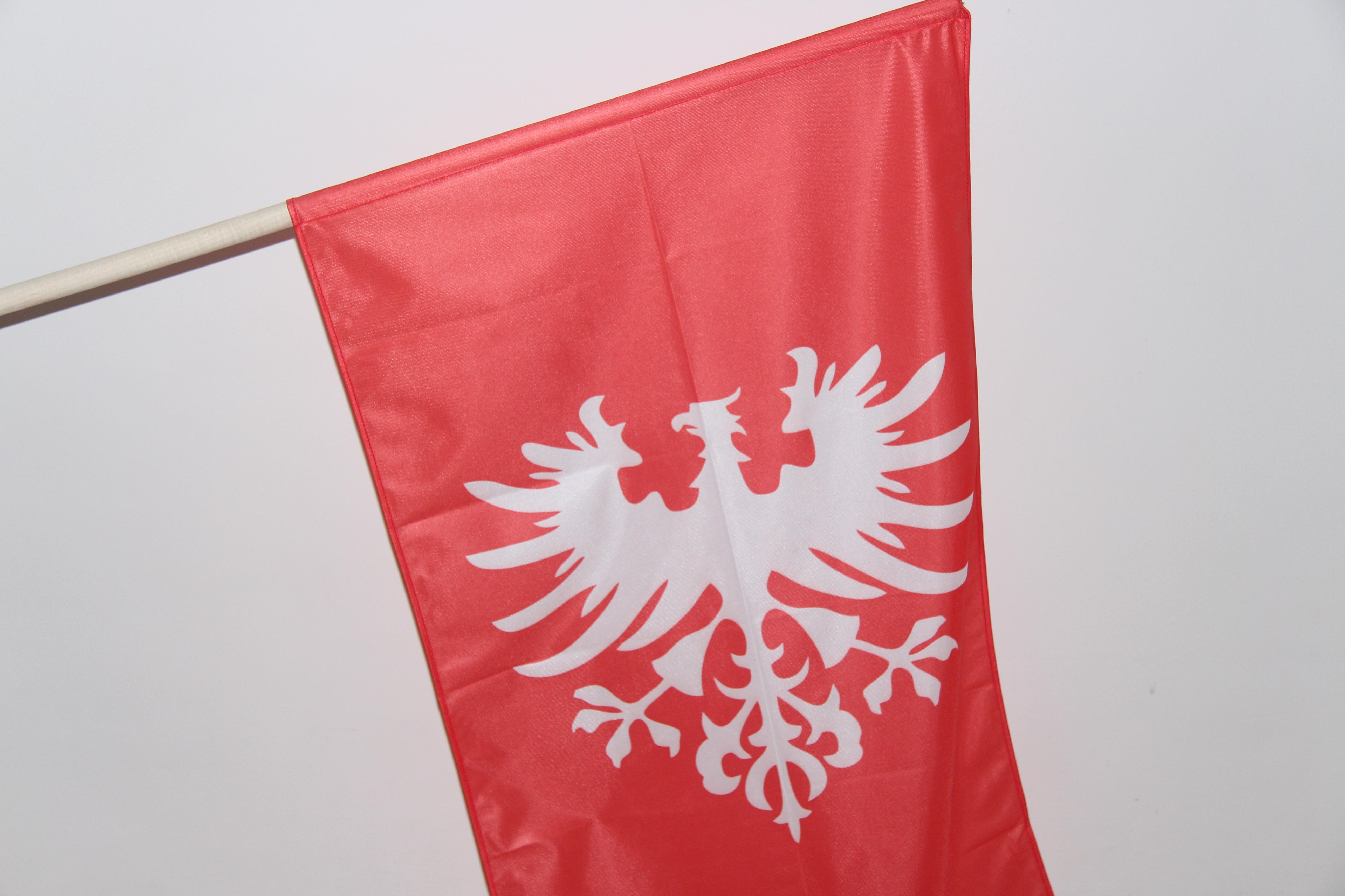 flaga powstańcza osieczna - UMiG Osieczna