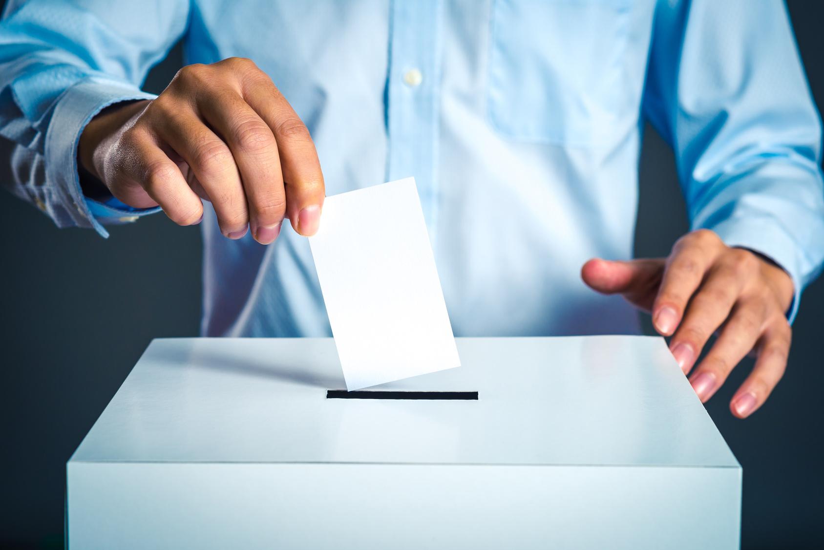 sondaż głosowanie - Fotolia