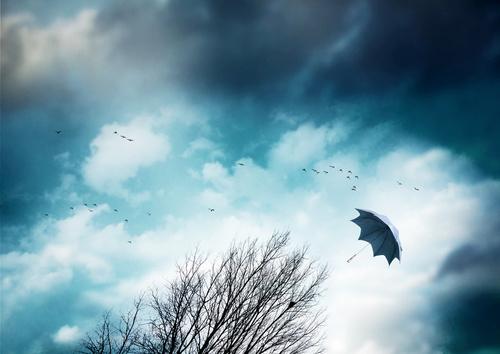 wichura wiatr parasol - Fotolia