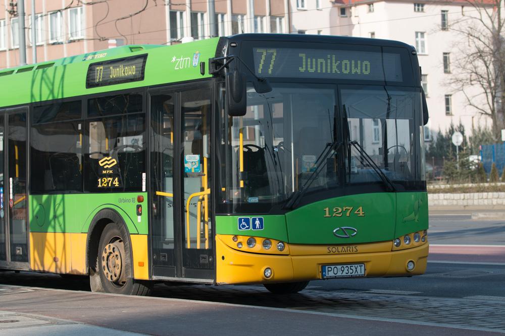 mpk autobus - Karolina Rej