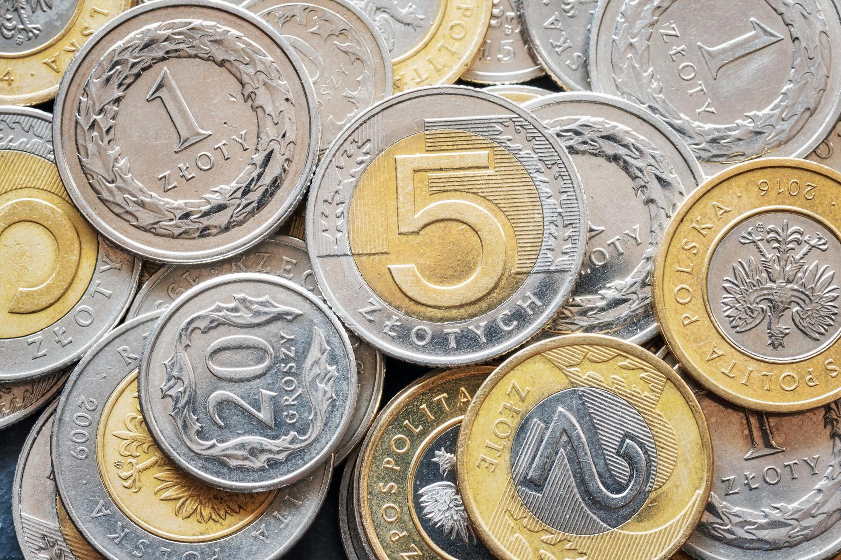 pieniądze złotówka monety bilon - Fotolia