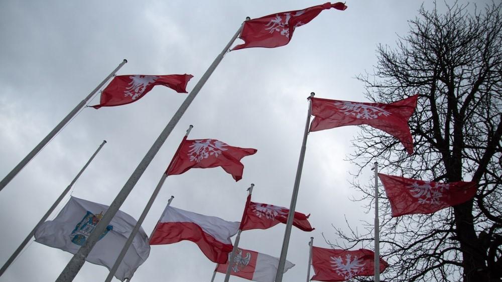obchody powstanie wielkopolskie flagi - Wojtek Wardejn