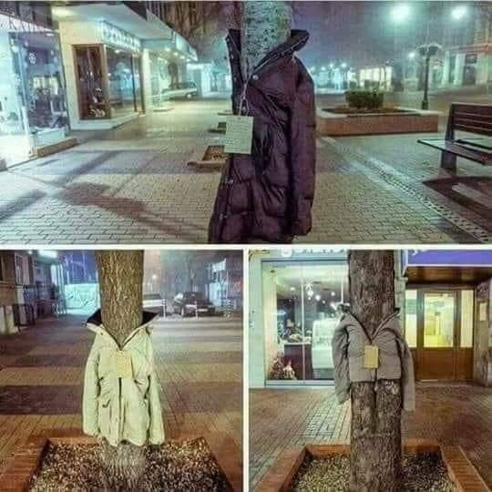ubrane drzewa happening - FB: Fundacja Sercem Przyprawiona