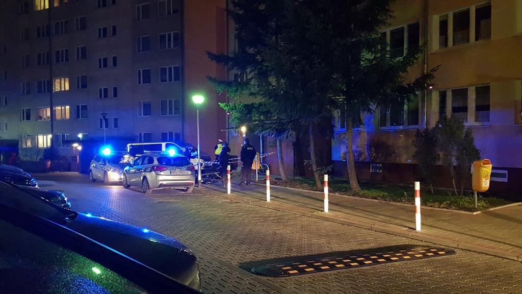 chłopiec wypadł z okna piła - Asta24.pl