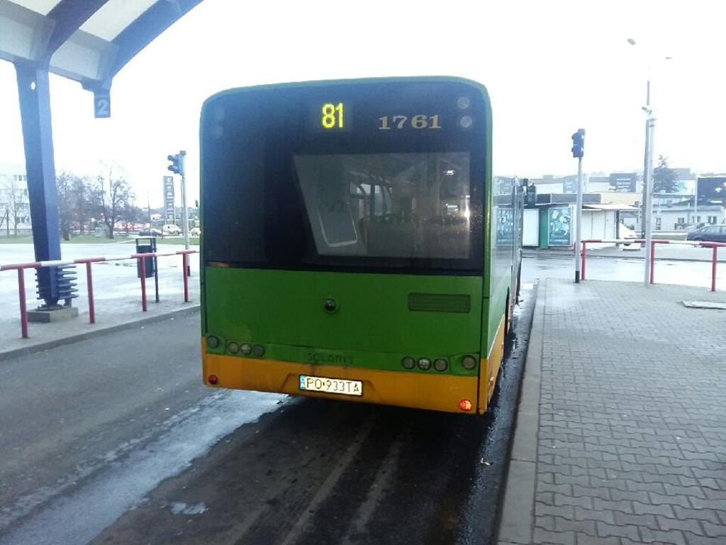 autobusy ze starą numeracją  - Magdalena Konieczna - Radio Poznań