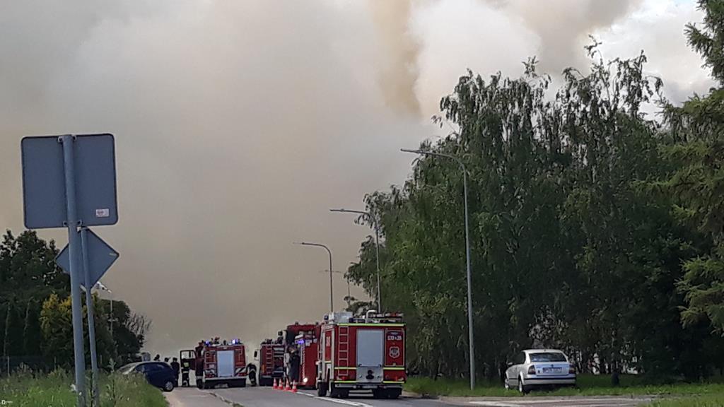 pożar wysypiska ostrów wielkopolski - Danuta Synkiewicz