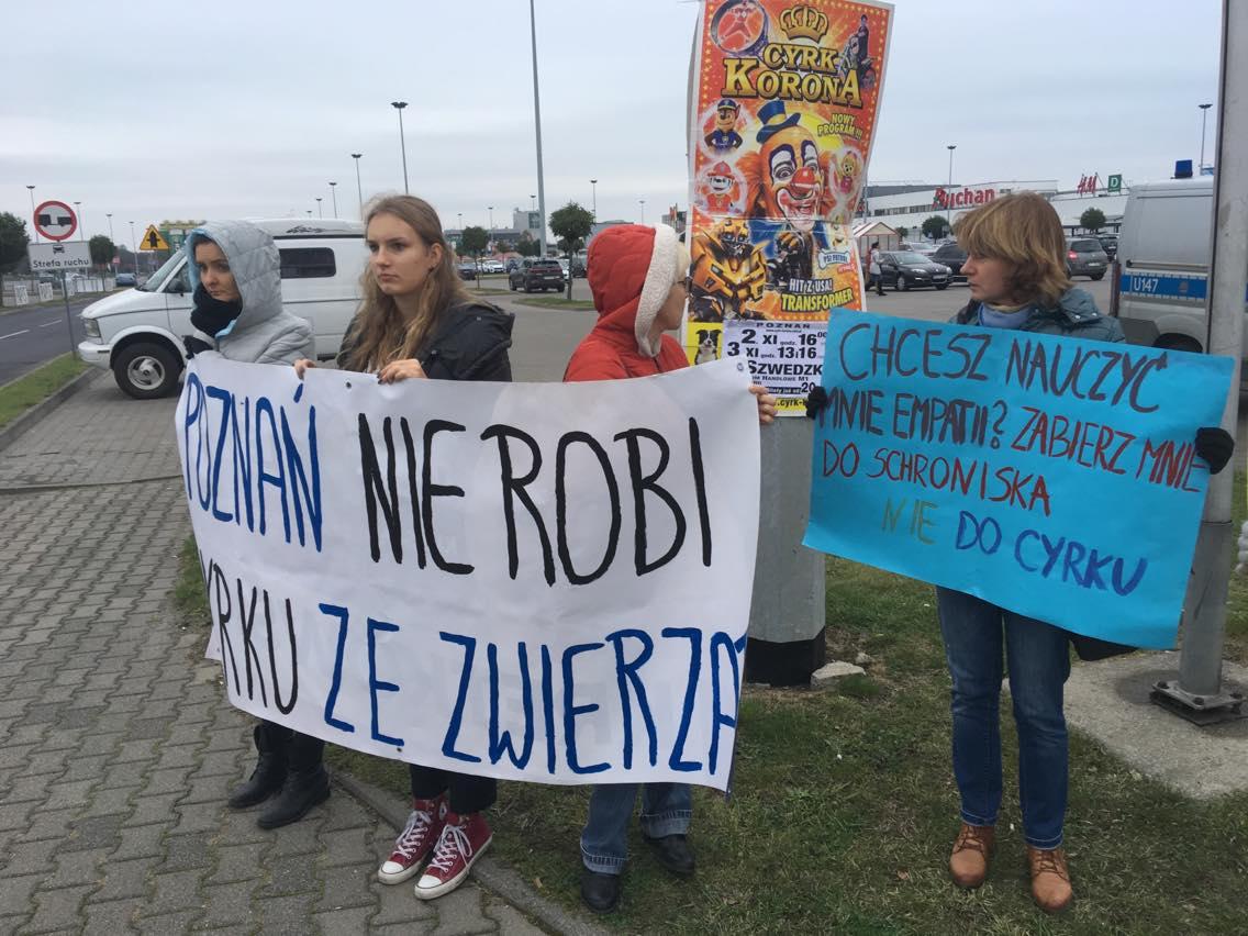 cyrk protest - Piotr Jaśkowiak
