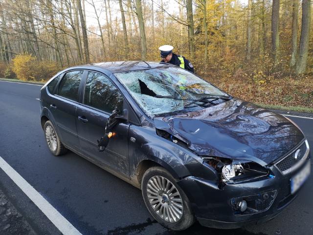 Leszczyńska Policja