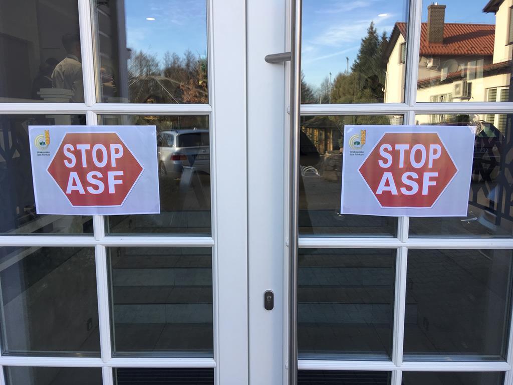 stop asf - Jacek Marciniak