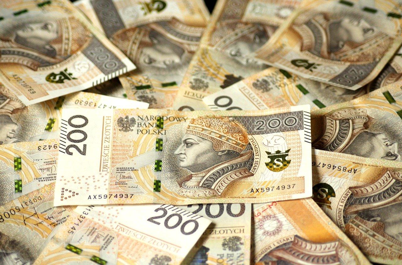 łapówka polski złoty - pixabay