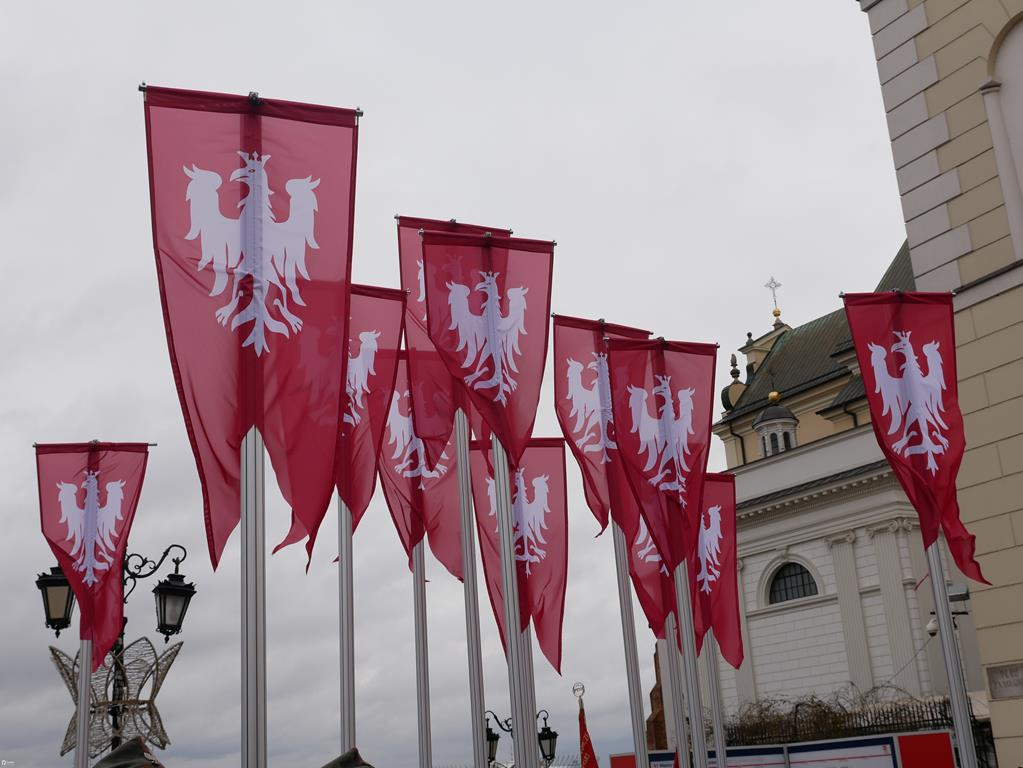 flagi powstanie wielkopolskie - Kacper Witt