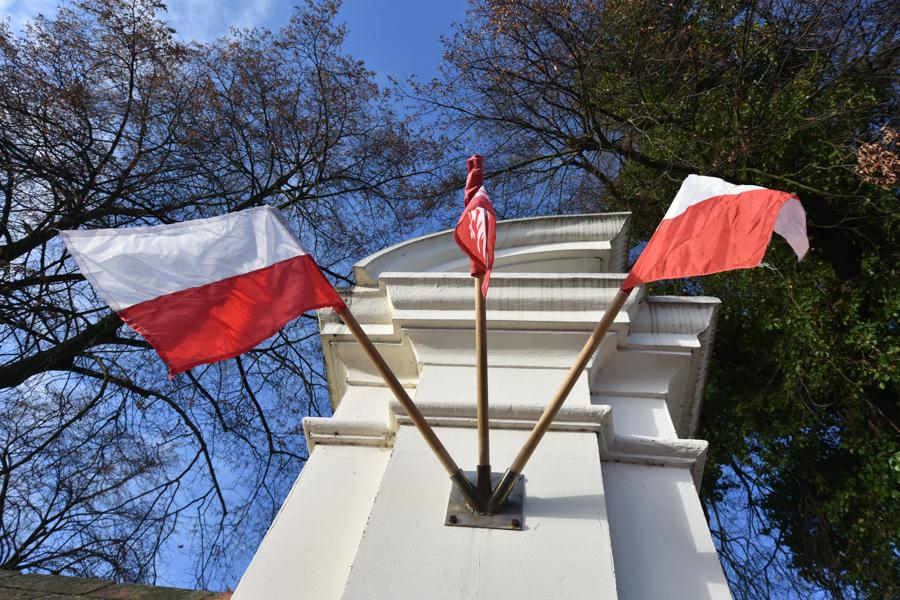 lusowo powstanie wielkopolskie Józef Dowbor-Muśnicki - Wojtek Wardejn