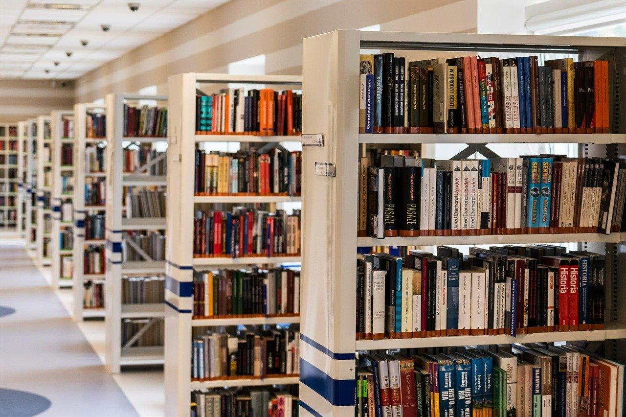 bilbioteka książki - Pixabay