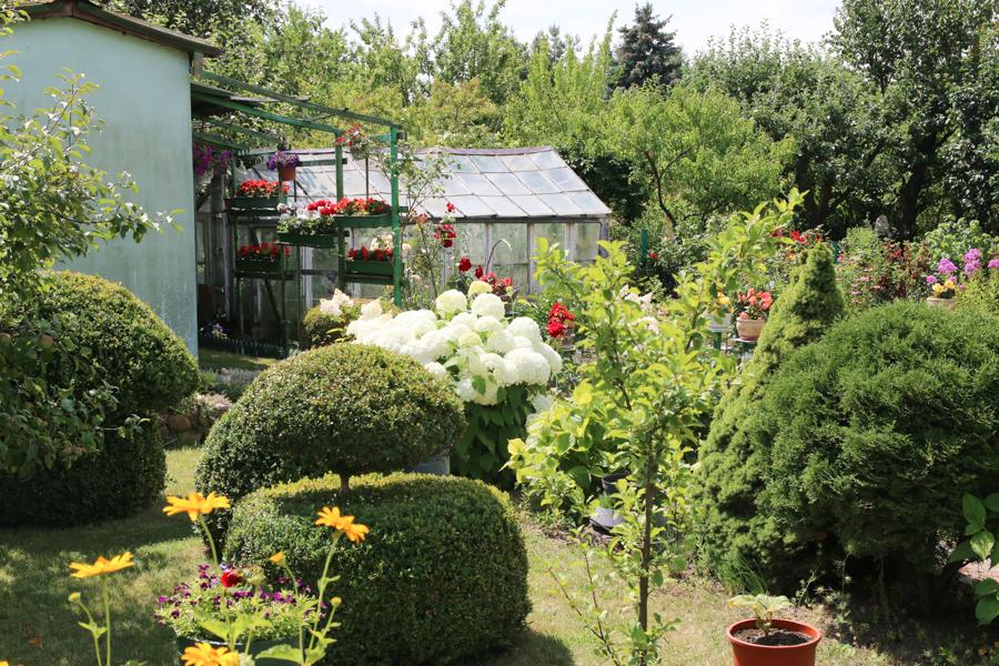 ogródki działkowe  - Leon Bielewicz