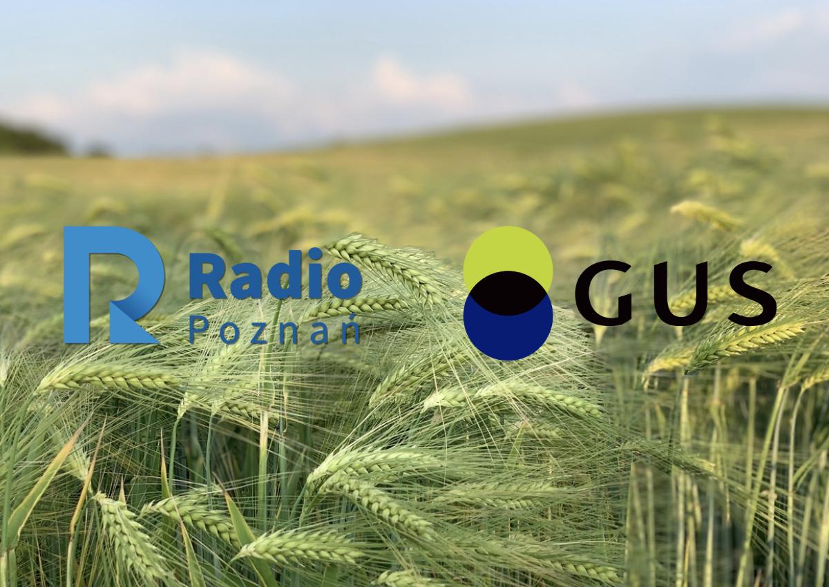 konkurs powszechny spis rolny radio poznan gus - Radio Poznań