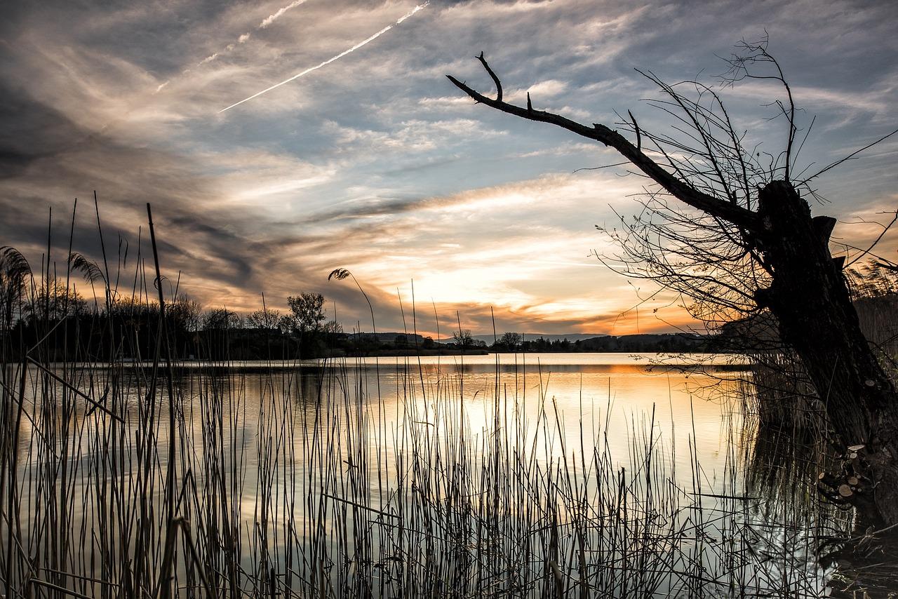 staw jezioro - Pixabay