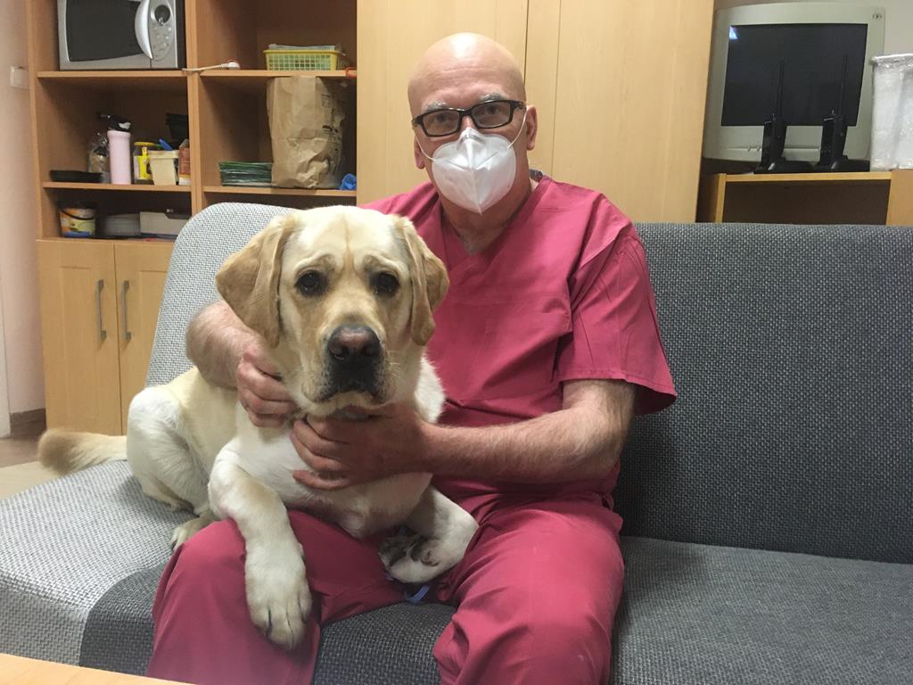 Pies walczy z pandemią w jarocińskim szpitalu - Rafał Regulski