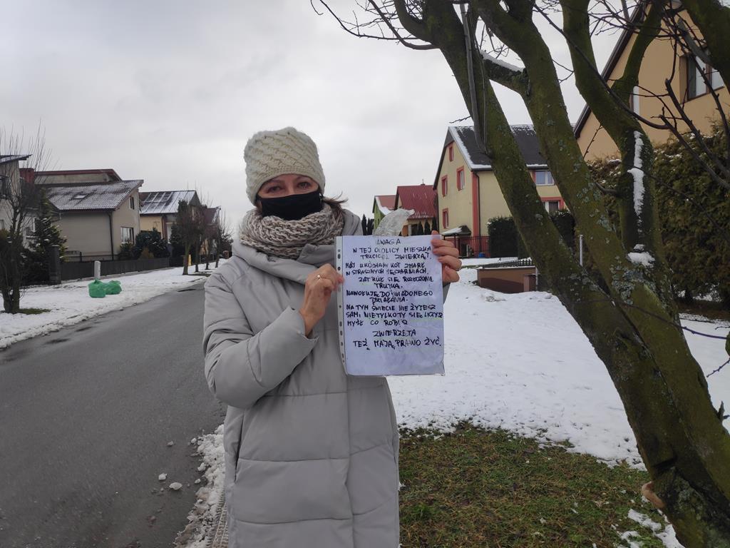 truciciel zwierząt kaczory - Przemysław Stochaj