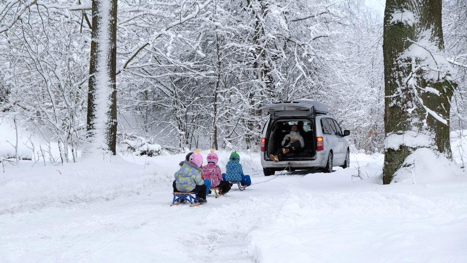 kulig za samochodem - Shutterstock