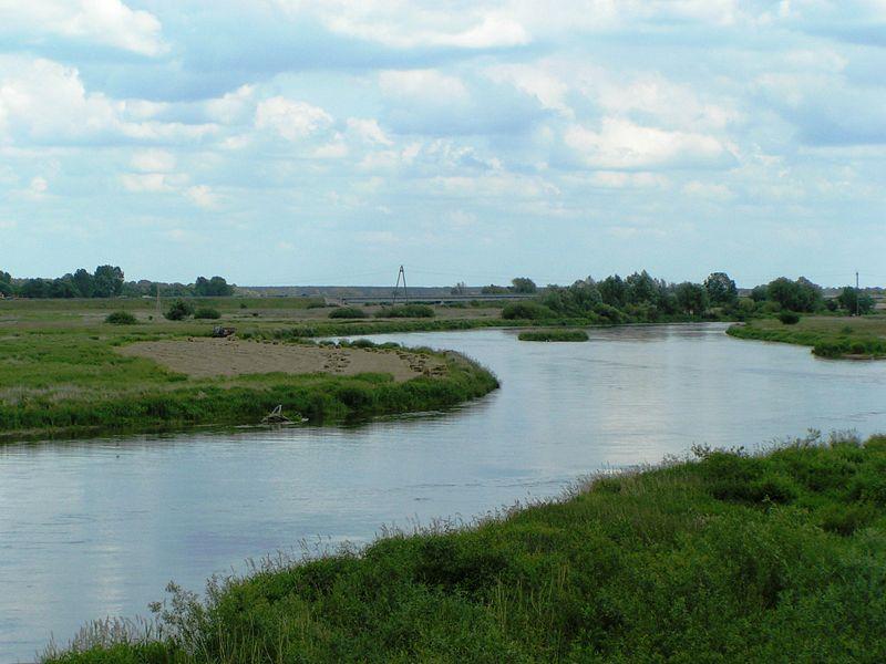 rzeka warta koło - Kolanin//en.wikipedia.org
