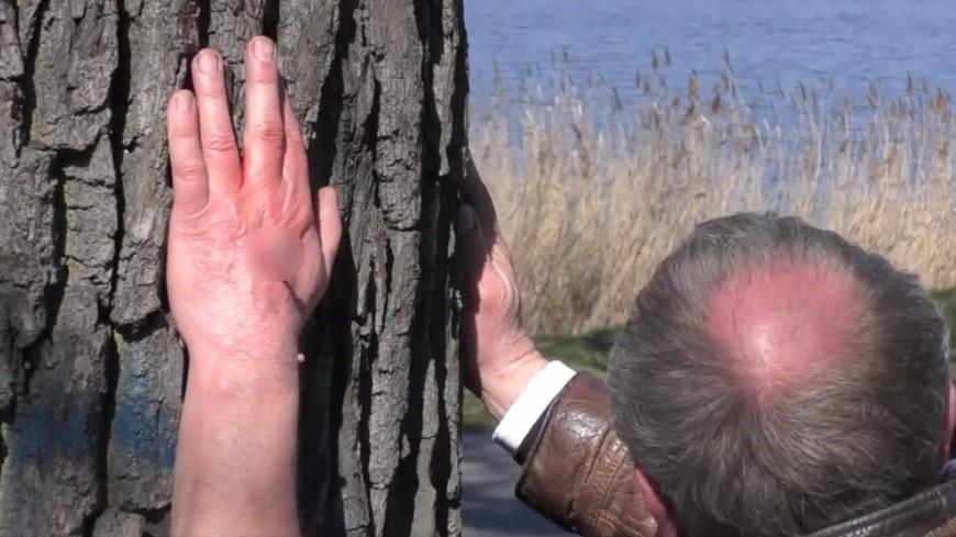 pan boguś bogdan bentyn przybił się do drzewa - FB: Bogdan Bentyn
