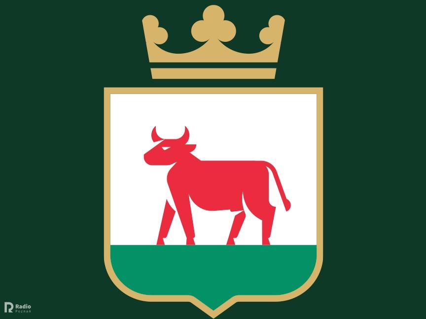 Logo trzcianka - Miasto i Gmina Trzcianka