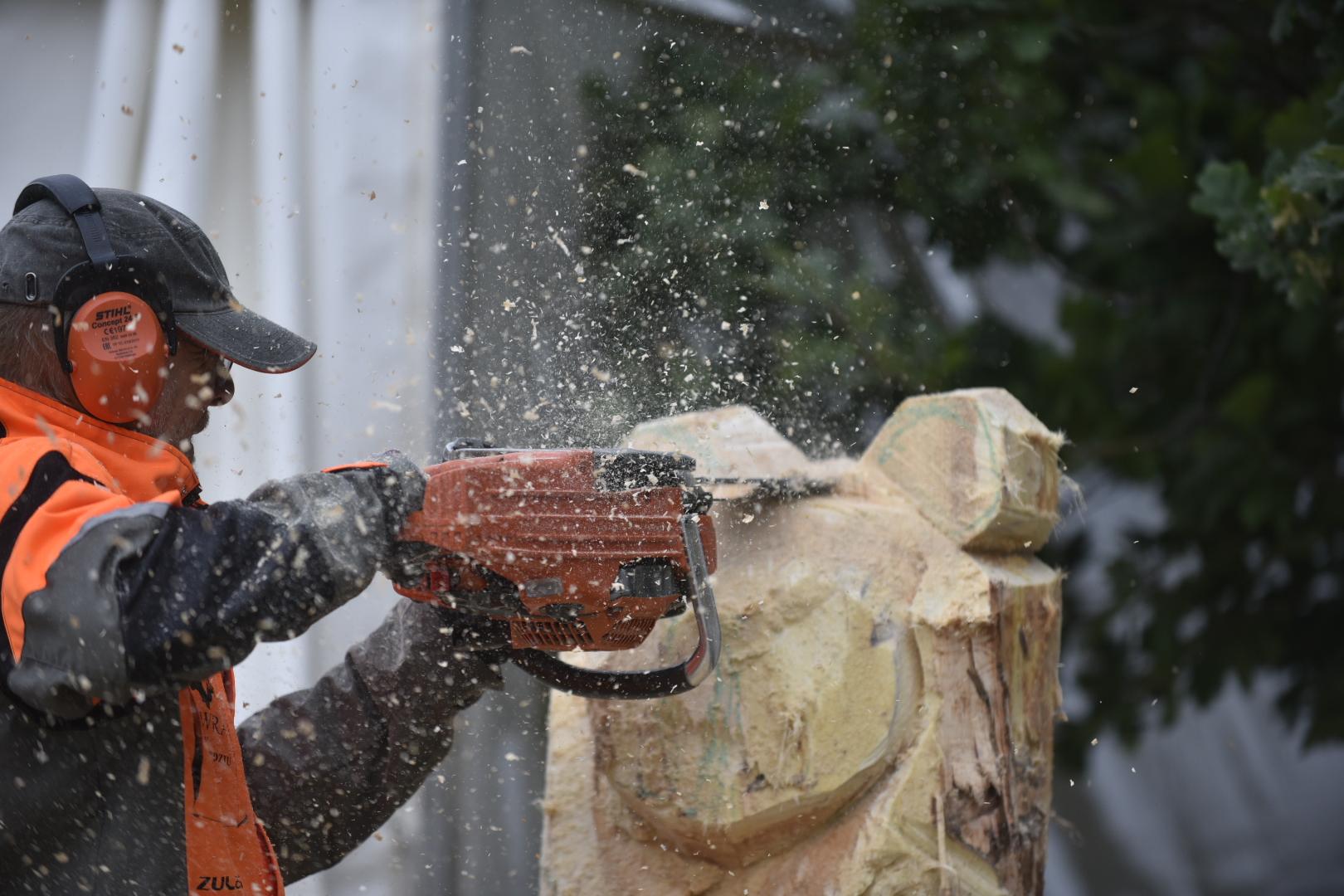POZnań Wood Festival cięcie drewna piła spalinowa wycinka  - Wojtek Wardejn
