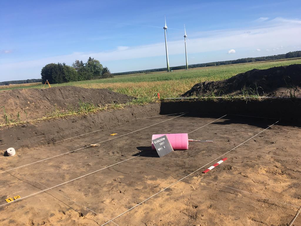 archeolodzy słuszków - Danuta Synkiewicz