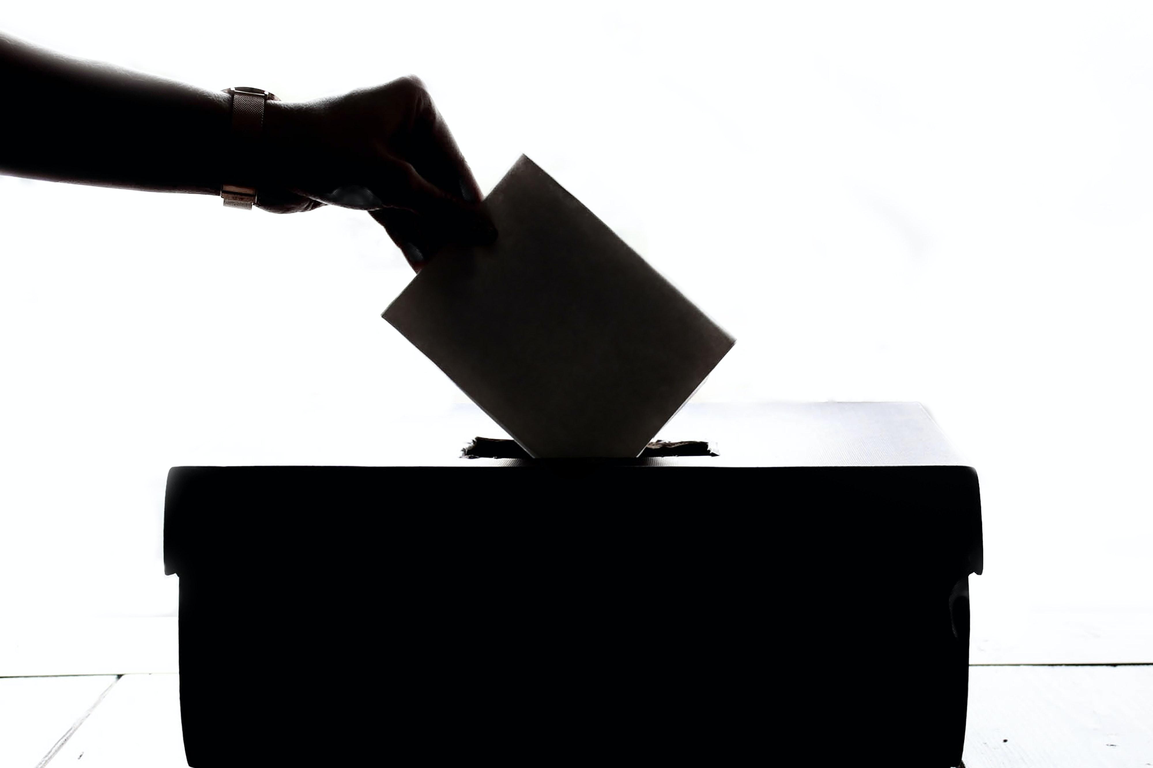 głosowanie urna wyborcza - Pexels