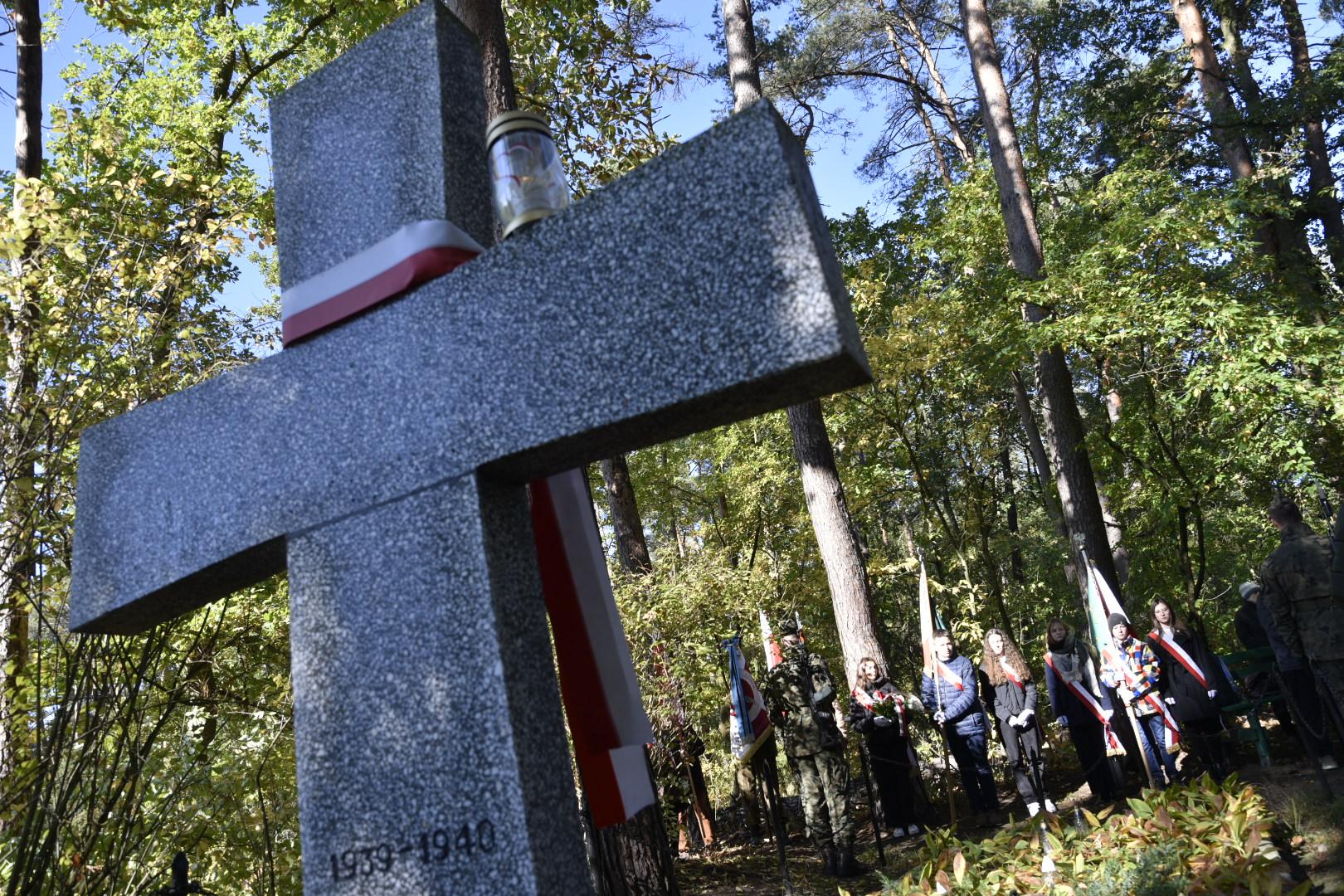 Marsz Pamięci w podpoznańskich lasach palędzko-zakrzewskich - Wojtek Wardejn