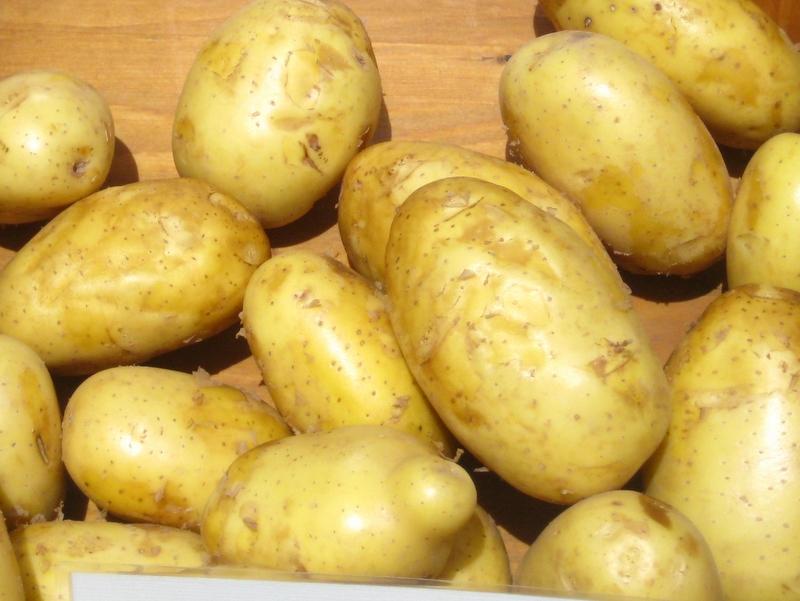 ziemniaki_elfe