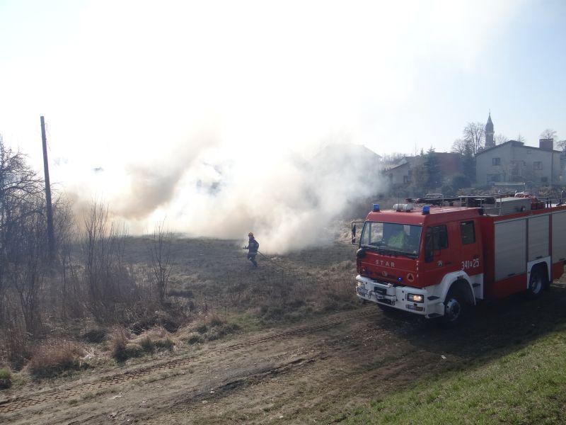 płoną trawy strażacy gaszą - Straż Pożarna/Kalisz