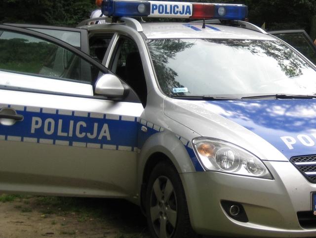 policja - radiowóz w lesie - Anna Skoczek