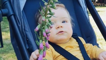Kwiaty od małego wojownika. Dajmy Frankowi najdroższy lek na świecie!